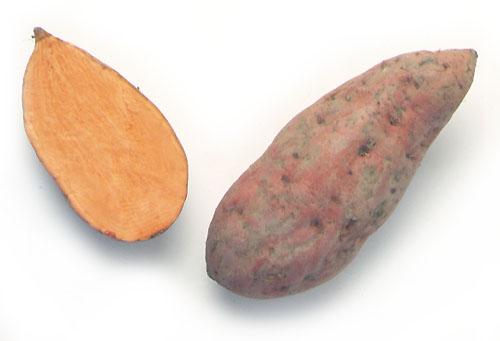 Sweet potato; Kumara