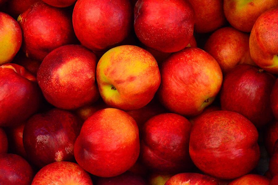 Fruta de semilla